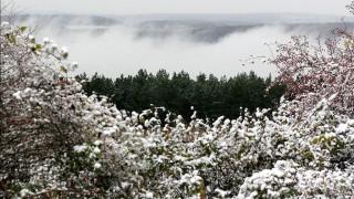 Havas bakonyi táj. Havas eső és hó hullott a Bakony magasabban fekvő részeire. A frissen hullott hó főleg Zirc, Hárskút és Lókút környékén maradt meg.