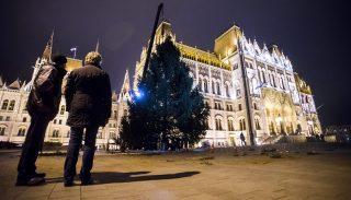 Budapest, 2015. november 27.Felállítják az ország karácsonyfáját a Kossuth téren 2015. november 26-án.MTI Fotó: Balogh Zoltán