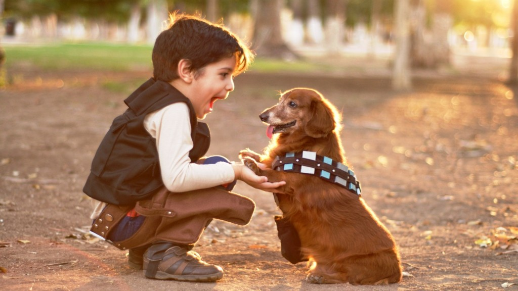 Pet photographer does cute Star Wars shoot to celebrate Chewbacca the dog's birthday, Hermosillo, Mexico - Mar 2014