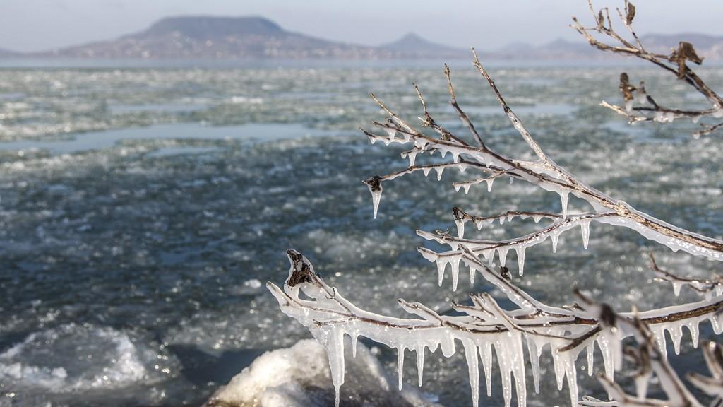 Fonyód, 2016. január 18.Jégcsapok egy bokor ágain Fonyódon, a tarajosra fagyott Balaton partján 2016. január 18-án.MTI Fotó: Varga György