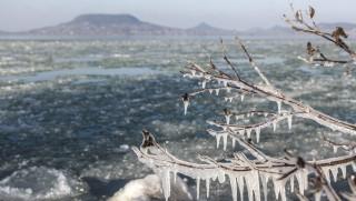 Fonyód, 2016. január 18. Jégcsapok egy bokor ágain Fonyódon, a tarajosra fagyott Balaton partján 2016. január 18-án. MTI Fotó: Varga György