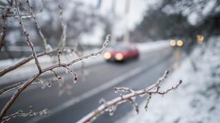 Pécs, 2016. január 6. Faágra fagyott ónos esõ Pécsen 2016. január 6-án. MTI Fotó: Sóki Tamás