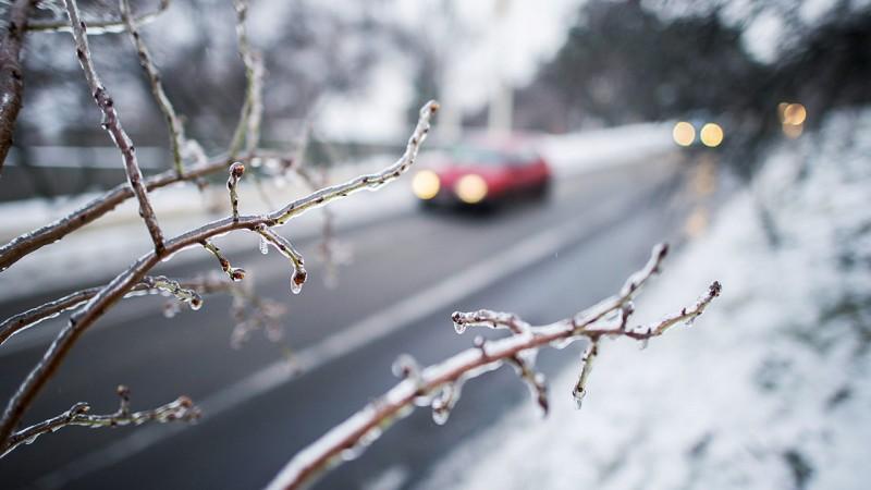 Pécs, 2016. január 6.Faágra fagyott ónos eső Pécsen 2016. január 6-án.MTI Fotó: Sóki Tamás