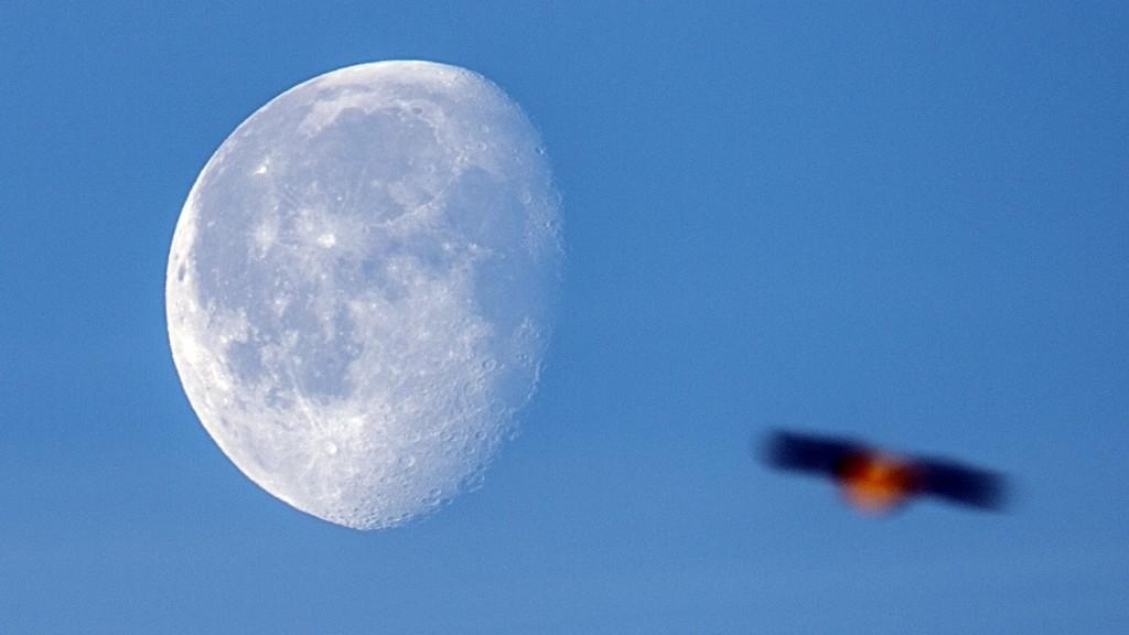 A bird flies past the waning moon above Neuss,Germany, 28 January 2016. Photo:Federico Gambarini/dpa