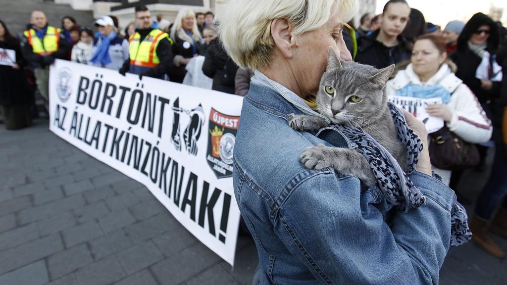 Budapest, 2016. február 20.Az állatkínzás ellen tüntetnek civilek az Országház előtti Kossuth Lajos téren 2016. február 20-án. A több mint száz állatvédő szervezet és több ezer ember a Nyugati térről vonult át a Parlament elé, ahol a demonstráció végén a szervezők átnyújtják az Országgyűlés mezőgazdasági bizottsága képviselőjének azt a törvénymódosító javaslatot, amely az állatkínzás büntetésének szigorítását tartalmazza.MTI Fotó: Szigetváry Zsolt