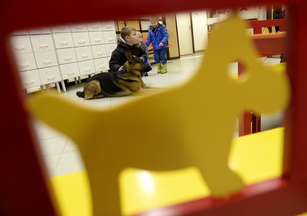 Budapest, 2016. február 10.Gyerekek játszanak Rexszel, Varga Károly gyermekorvos kutyájával, az óbudai Ányos utcai gyermekorvosi rendelőben 2016. február 10-én. A terápiás minősítéssel rendelkező német juhász minden rendelésre elkíséri gazdáját, ahol neki is szerepe van, megnyugtatja a gyerekeket, leköti a figyelmüket.MTI Fotó: Kovács Tamás