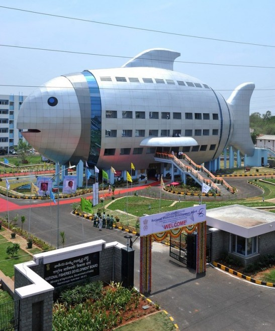 A general view shows the newly opened National Fisheries Development Board (NFDB) building, designed to resemble a fish, in Hyderabad on April 20, 2012. The National Fisheries Development Board (NFDB) functions as a coordinating mechanism between different fishery agencies and a platform for partnerships. AFP  PHOTO/Noah SEELAM (Photo credit should read NOAH SEELAM/AFP/Getty Images)