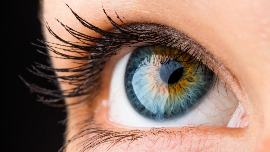 beautiful eye macro