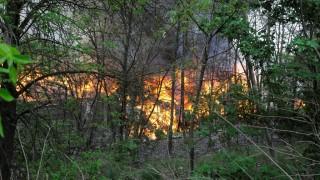 Tűz Szegeden - Hulladékhasznosító cég telephelye gyulladt k