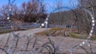 Illegális bevándorlás - Magyar-szerb határ