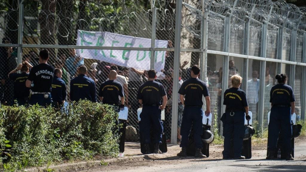 Illegális bevándorlás - Gyorsabb ügyintézést kér háromszáz kiskunhalasi menekültügyi őrizetes