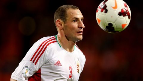 AMSTERDAM, NETHERLANDS - OCTOBER 11:  Vilmos Vanczak of Hungary during the FIFA 2014 World Cup Qualifing match between Holland and Hungary at Amsterdam Arena on October 11, 2013 in Amsterdam, Netherlands.  (Photo by Scott Heavey/Getty Images)