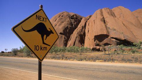 Australia, Northern Territory, Road sign kangaroo crossing in front of Ayers Rock