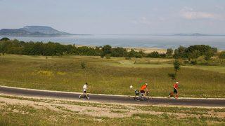 Balatongyörök, 2015. május 30.Futók a 220 kilométeres Ultrabalaton versenyen Balatongyöröknél 2015. május 30-án. A kilencedik alkalommal megrendezett szabadidős sporteseményen a résztvevők a Balatont megkerülve teljesítik a távot futva, kerékpárral, egyéniben vagy csapatban.MTI Fotó: Varga György