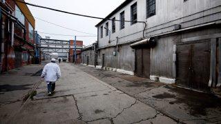 Kapuvár, 2012. november 20. Egy dolgozó sétál a kapuvári húsüzem udvarán 2012. november 20-án. Egy hónappal a Kapuvári Hús Zrt. után elbocsátja dolgozóit az üzemet mûködtetõ másik társaság, a Kapuvári Bacon Kft. is. MTI Fotó: Krizsán Csaba