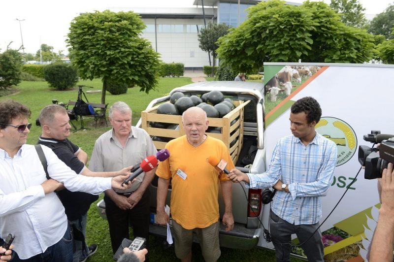 Budapest, 2016. július 27. Oravecz Tamás, a Dinnyetermelõk Országos Egyesületének elnöke (k) újságíróknak nyilatkozik a termelõk demonstrációján, amelyen a Tesco árpolitikája ellen tiltakoztak az áruházlánc budaörsi hipermarketjénél 2016. július 27-én. MTI Fotó: Soós Lajos