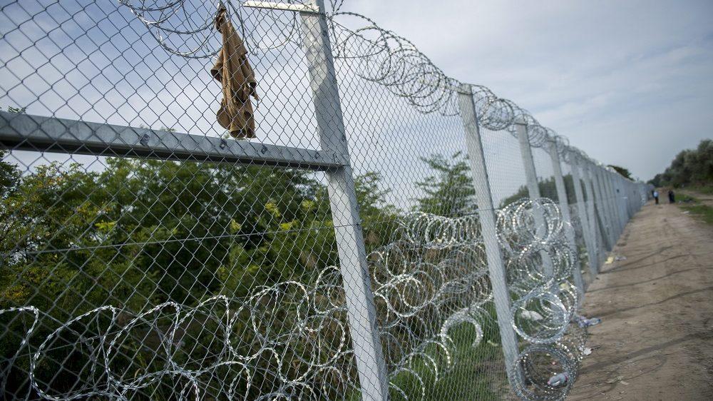 Röszke, 2015. szeptember 17. Illegális bevándorlók által átvágott, de már megjavított kerítésszakasz a magyar-szerb biztonsági határzáron, Röszke közelében 2015. szeptember 17-én. Ettõl a naptól részleges határzárat rendelt el a Röszke-Horgos autópálya határátkelõhelyen, valamint a Röszke-Horgos közúti határátkelõhelyen Pintér Sándor belügyminiszter. Szeptember 16-án könnygázt és vízágyút is bevetettek a magyar rendõrök a magyar-szerb határnál az õket dobáló illegális bevándorlókkal szemben. MTI Fotó: Sóki Tamás