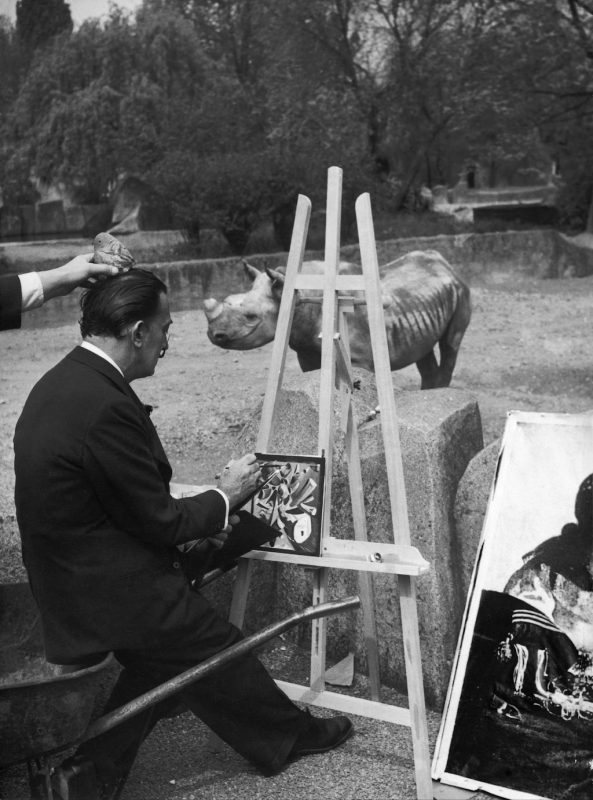 FRANCE - APRIL 30:  Salvador DALI painting a rhinoceros while sitting on a wheelbarrow at the Vincennes Zoo on April 30, 1955. A teasing hand is seen placing a stone on his head.  (Photo by Keystone-France/Gamma-Keystone via Getty Images)
