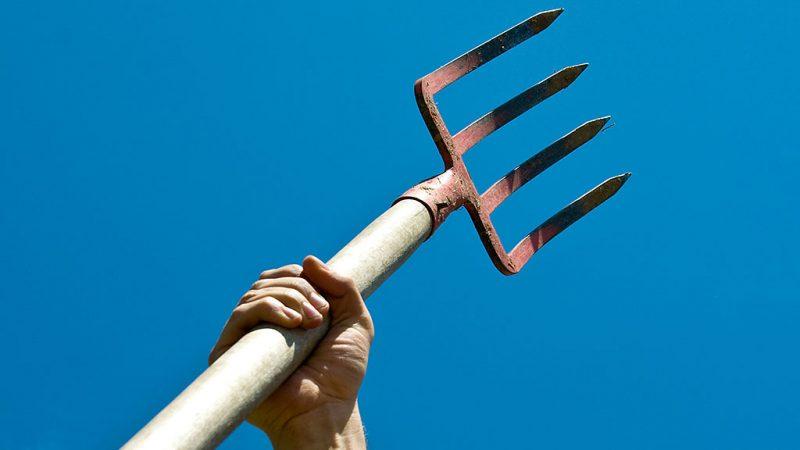 Triumphant farmer hoisting pitchfork
