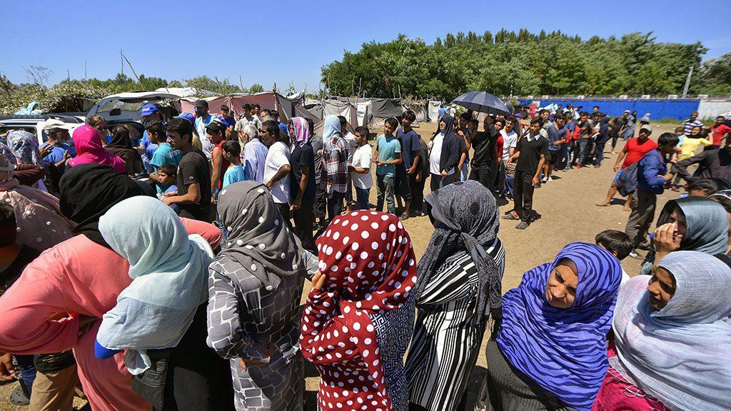 Horgos, 2016. július 11.Migránsok a szerb-magyar határ közelében, Horgosnál 2016. július 11-én. A határ szerbiai oldalán az Európia Unió nyugati államaiba igyekvő több száz migráns táborozik arra várva, hogy valahogyan bejusson Magyarországra.MTI Fotó: Molnár Edvárd