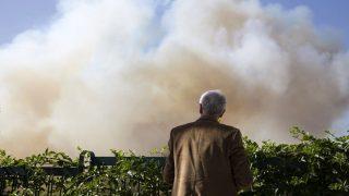 Haifa, 2016. november 24. Bozóttûz füstjét nézi egy férfi Haifában 2016. november 24-én, amikor harmadik napja pusztítanak bozóttüzek Izraelben. Az izraeli rendõrség szerint nem kizárt a gyújtogatás, ennek gyanújával négy palesztint õrizetbe vettek. (MTI/AP/Ariel Schalit)