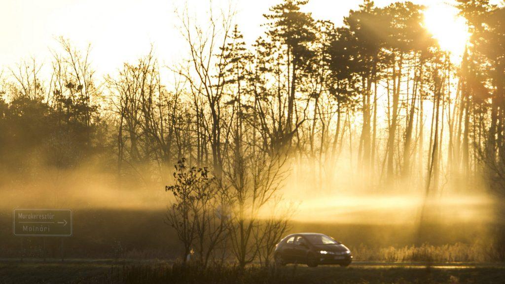Nagykanizsa, 2016. október 31. A felkelõ nap sugarai szûrõdnek át egy fa ágain a ködben a 7-es fõút mellett Nagykanizsa határában 2016. október 31-én. MTI Fotó: Varga György