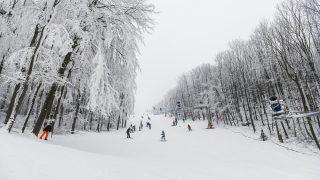 Eplény, 2016. január 2. Síelõk az eplényi Síarénában 2016. január 2-án. MTI Fotó: Bodnár Boglárka