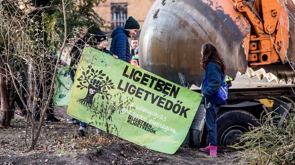 Budapest, 2016. december 13. A munkálatok miatt a fákért tiltakozó Ligetvédõk megpróbálják megakadályozni egy fa átültetését a Városligetben 2016. december 13-án. MTI Fotó: Balogh Zoltán