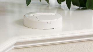 Carbon monoxide detector alarm on a home foyer house plant shelf.