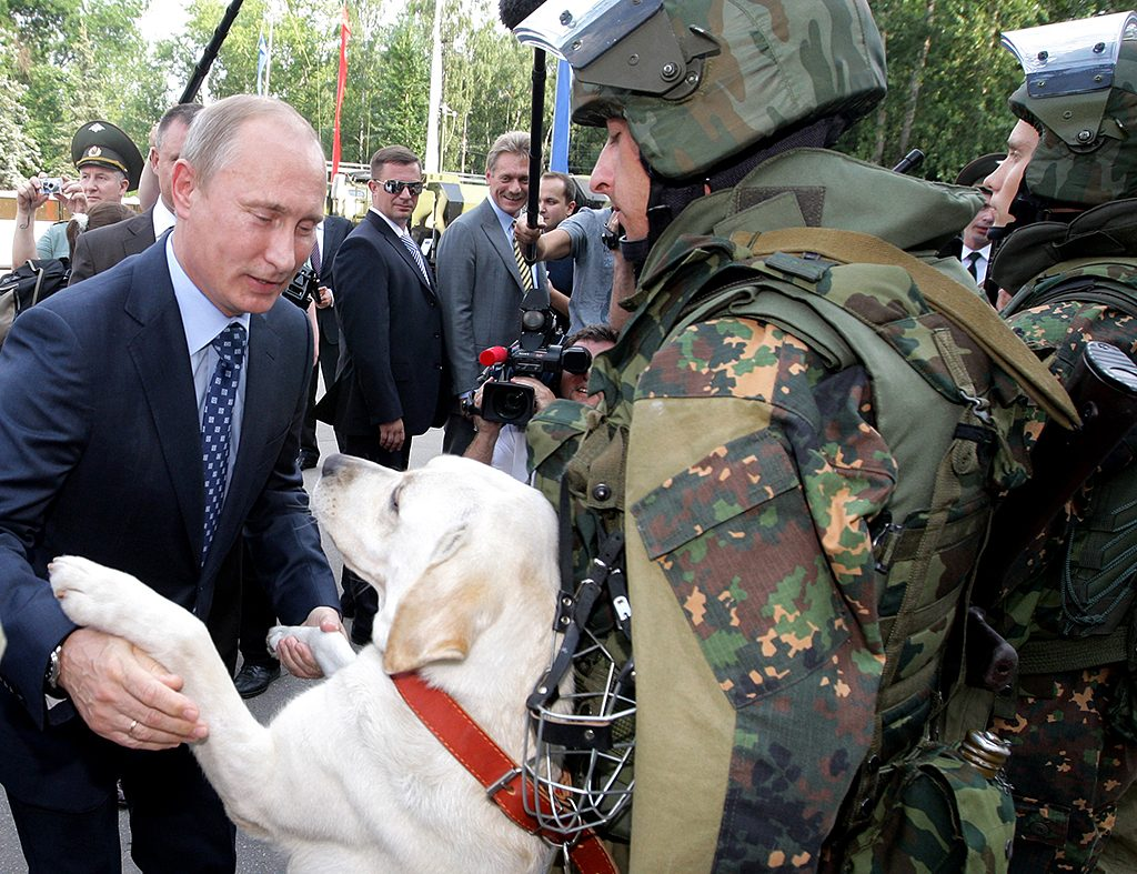 Russian Prime Minister Vladimir Putin greets a soldier's dog as he visits a division of the Ministry of Internal Affairs in Balashiha, outside Moscow ,on July 22, 2011. AFP PHOTO/ RIA-NOVOSTI POOL/ ALEXEY DRUZHININ / AFP PHOTO / RIA NOVOSTI / ALEXEY DRUZHININ