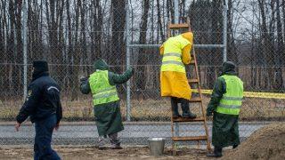 Kelebia, 2017. március 1. Elítéltek építik a szerb-magyar határszakaszon a mûszaki határzára mögötti második védelmi vonal kerítését Kelebia határában 2017. március 1-jén. Lázár János, a Miniszterelnökséget vezetõ miniszter február 23-án jelentette be, hogy a szerb-magyar határszakasz mûszaki határzára mögött egy második védelmi vonal kiépítésérõl döntött a kormány. MTI Fotó: Ujvári Sándor