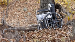 Wheelchair by a tree