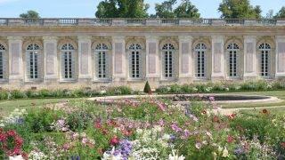 France, Ile de France region, yvelines, versailles, chateau, grand trianon, garden, flowers,  Photo Gilles Targat