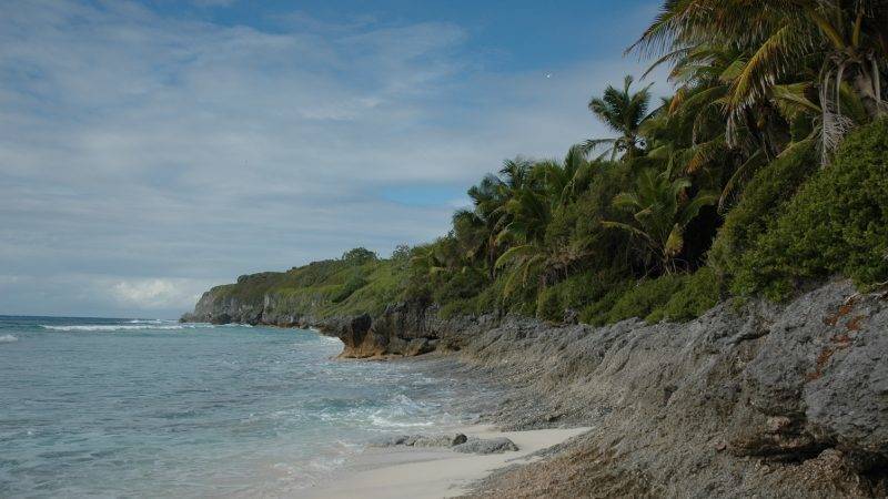 Northwest Beach. Henderson Island (United Kingdom of Great Britain and Northern Ireland)