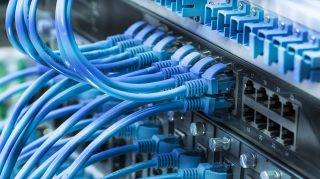 patch network cables connected to switch