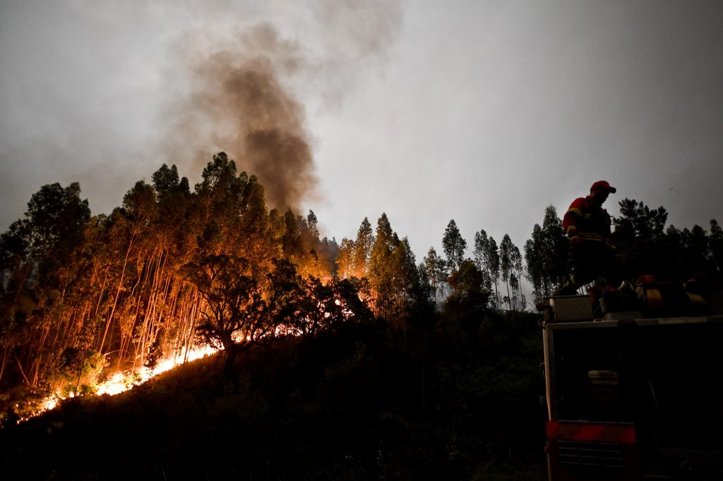 A firefighter stands on top of a fire combat truck during a wildfire at Penela, Coimbra, central Portugal, on June 18, 2017 A wildfire in central Portugal killed at least 25 people and injured 16 others, most of them burning to death in their cars, the government said on June 18, 2017. Several hundred firefighters and 160 vehicles were dispatched late on June 17 to tackle the blaze, which broke out in the afternoon in the municipality of Pedrogao Grande before spreading fast across several fronts.    / AFP PHOTO / PATRICIA DE MELO MOREIRA