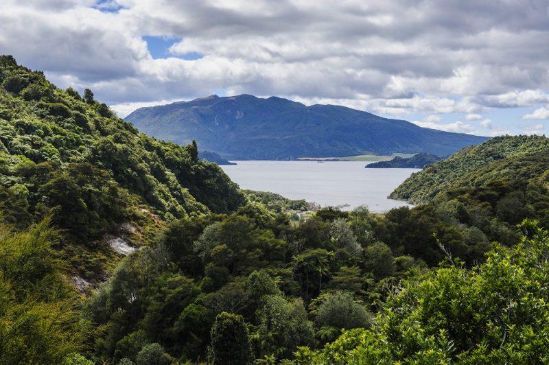 View over Lake Rotomahana, Waimangu Volcanic Valley, North Island, New Zealand, Pacific