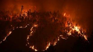 A picture taken on June 18, 2017 shows a forest in flames during a wildfire near the village of Mega Fundeira. Portugal declared three days of national mourning from June 18, 2017 after the most deadly forest fire in its recent history, raging through the centre of the country.The fire, which broke out June 17, 2017 in the Pedrogao Grande district, had killed at least 62 people and injured more than 50, according to the latest official update by Sunday afternoon.   / AFP PHOTO / MIGUEL RIOPA