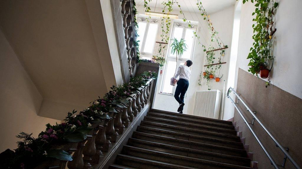 Budapest, 2017. május 5.Egy diák segít a díszítésben az ELTE Trefort Ágoston Gyakorló Gimnázium diákjainak ballagása előtt a fővárosi oktatási intézményben 2017. május 5-én.MTI Fotó: Balogh Zoltán