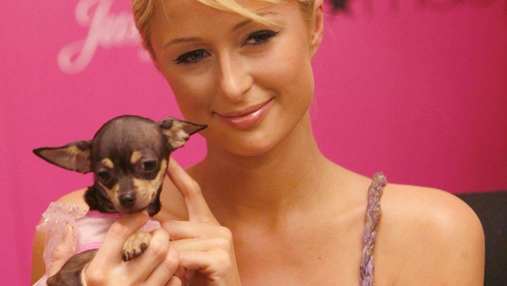 "Paris Hilton during Paris Hilton Celebrates the Launch of Her New ""Just Me"" Perfume in Miami at Macy's Store in Miami, Florida, United States. (Photo by Rodrigo Varela/WireImage)"