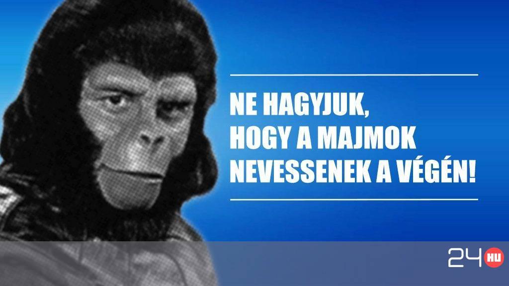 Az emberiség jövője a majmok kezében volt fd73b8f780