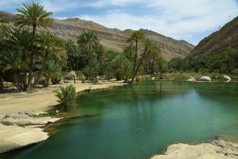 watering hole in the desert in Oman