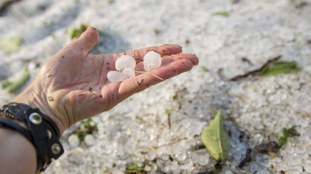 Orosháza, 2017. augusztus 6. Jégdarabok vihar után Orosházán 2017. augusztus 6-án. MTI Fotó: Rosta Tibor