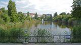 Budapest, 2016. június 10. A Feneketlen-tó látképe a fõváros XI. kerületében. MTVA/Bizományosi: Róka László  *************************** Kedves Felhasználó! Ez a fotó nem a Duna Médiaszolgáltató Zrt./MTI által készített és kiadott fényképfelvétel, így harmadik személy által támasztott bárminemû – különösen szerzõi jogi, szomszédos jogi és személyiségi jogi – igényért a fotó készítõje közvetlenül maga áll helyt, az MTVA felelõssége e körben kizárt. *** Local Caption *** A Budai Arborétum az ország egyik leggazdagabb arborétuma övezi a kertészeti felsõoktatás fellegvárának keretet adó Szent István Egyetem budai campusának épületegyüttesét. Az arborétum a Gellért-hegy déli lábánál terül el, a Villányi út–Szüret utca–Somlói út között. Területét a Ménesi út két, korban és jellegben elváló részre osztja: az Alsó és a Felsõ Kertre.