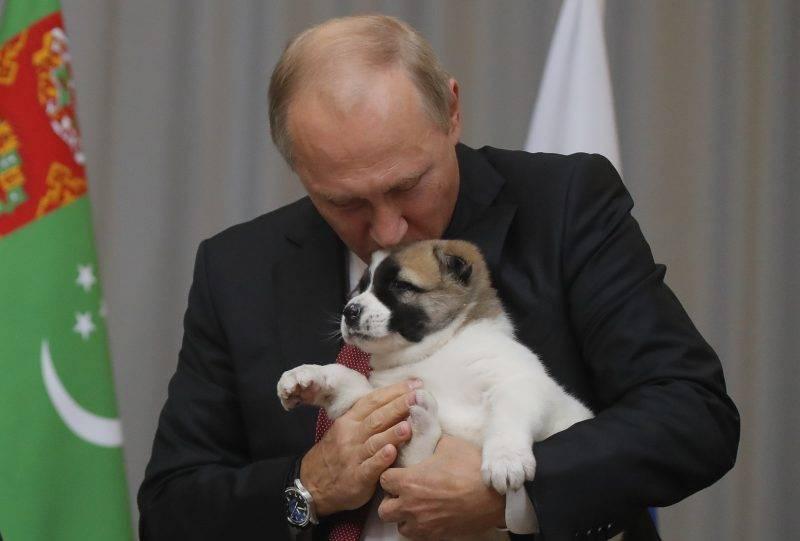 Russian President Vladimir Putin kisses a Turkmen shepherd dog, locally known as Alabai, received by Turkmenistan's President Gurbanguly Berdimuhamedov during a meeting in Sochi, on October 11, 2017.  / AFP PHOTO / POOL / MAXIM SHEMETOV