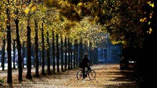 An autumnal scene in Berlin, Germany, 17 October 2017. Photo: Ralf Hirschberger/dpa-Zentralbild/dpa