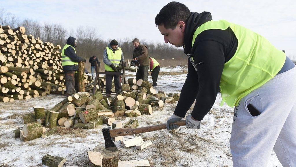 Dány, 2017. január 11. Közmunkások aprítják fel a Belügyminisztérium által meghirdetett tüzelõanyag-pályázat keretében elnyert támogatásból vásárolt tûzifát Dányban 2017. január 11-én. A minisztérium saját keretébõl biztosít tüzelõanyag-támogatást az ötezer lakos alatti településeken élõ rászorulóknak, a pályázat 180 ezer embernek jelent segítséget. MTI Fotó: Kovács Tamás