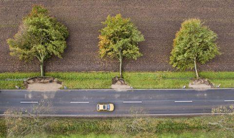 Hildesheim, 2017. október 6. A Xavier elnevezésû viharban kidõlt fák öveznek egy autóutat az észak-németországi Hildesheim közelében 2017. október 6-án. Az erõs széllökésekkel kísért elõzõ napi viharban legkevesebb hét ember életét vesztette a térségben, és sokan megsérültek. (MTI/AP/Julian Stratenschulte)