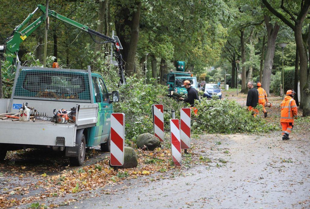 Bréma, 2017. október 6. A Xavier elnevezésû viharban lehasadt faágakat távolítják el az útról munkások az észak-németországi Brémában 2017. október 5-én. Az óránkénti 110-120 kilométeres sebességû széllökésekkel érkezett viharban legkevesebb hét ember életét vesztette az országban, és sokan megsérültek. (MTI/EPA/Focke Strangmann)