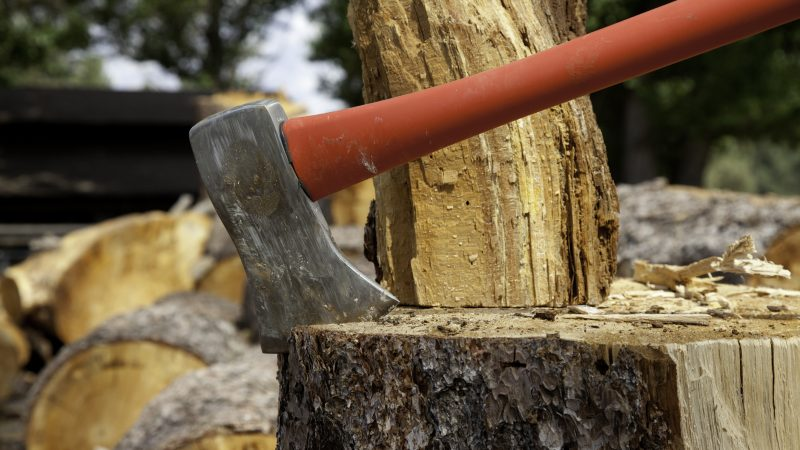 Axe wedged into tree stump